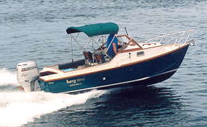 Island commuter or sportfisher, the 20' Coho